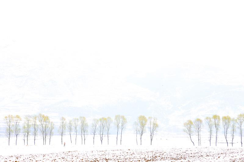 《春来冬去》-马成海-摄-特木里镇