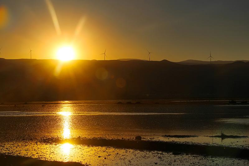 《金色湿地》-木色尔布摄--乐安乡