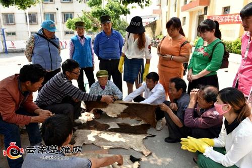 宜就镇举办羊皮褂培训班3(李赞阳摄)